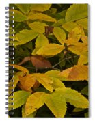 Beach Leaves Spiral Notebook