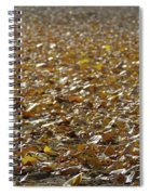 Beach Of Autumn Leaves Spiral Notebook