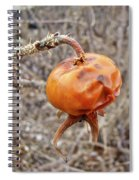 Beach Rose Hip - Rosa Rugosa Spiral Notebook