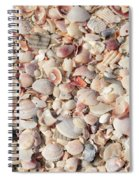 Beach Seashells Spiral Notebook