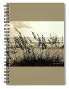Beach - Sepia Spiral Notebook