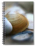 Beach Shells Spiral Notebook