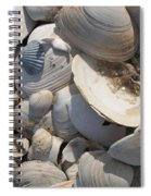 Beach Still Life IIi Spiral Notebook