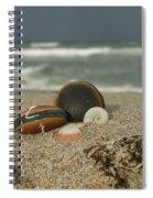 Beach Treasures 1 Spiral Notebook