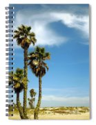 Beach View With Palms And Birds Spiral Notebook