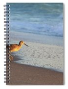 Beachcomer Spiral Notebook