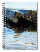 Beached Tree Spiral Notebook