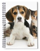 Beagle And Calico Cat Spiral Notebook
