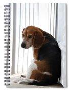 Beagle Attitude Spiral Notebook