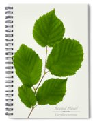 Beaked Hazel Spiral Notebook
