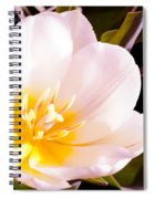 Beaming With Life Spiral Notebook