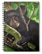Bear Cub Spiral Notebook