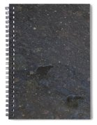 Bear Flurries Spiral Notebook