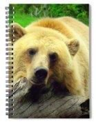 Bear On A Log Spiral Notebook