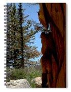 Bear Watch Spiral Notebook