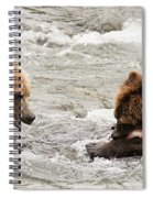 Bear Watches Another Eat Salmon In River Spiral Notebook