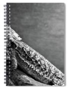 Bearded Dragon Spiral Notebook