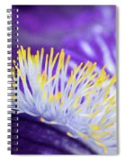 Bearded Iris Macro Spiral Notebook