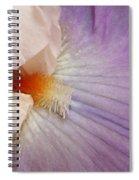 Bearded Iris Spiral Notebook