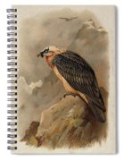 Bearded Vulture By Thorburn Spiral Notebook