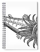 Bearded Whale Spiral Notebook