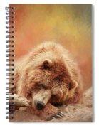 Bearly Asleep Spiral Notebook
