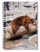 Bearly Relaxing Spiral Notebook