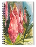 Beauties - Note Card Spiral Notebook