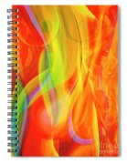 Beauties 2 Spiral Notebook