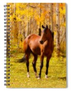 Beautiful Autumn Horse Spiral Notebook