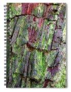 Beautiful Bark Spiral Notebook