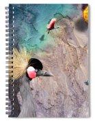 Beautiful Birds Spiral Notebook