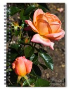 Beautiful Bloom Of The Rose Atlantic Star Spiral Notebook