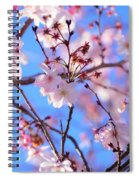Beautiful Blossoms Blooming  For Spring In Georgia Spiral Notebook