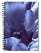 Beautiful Blue Spiral Notebook