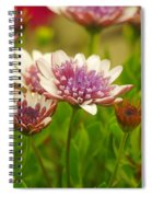 Beautiful Boquet Spiral Notebook