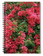 Beautiful Bougainvillea - Digital Painting Spiral Notebook