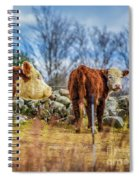 Beautiful Bovine With Side Eye Spiral Notebook