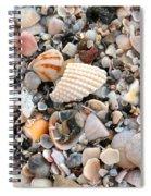 Beautiful Broken Shells Spiral Notebook