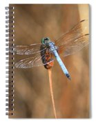 Beautiful Broken Wing Spiral Notebook