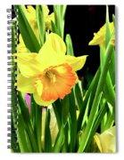 Beautiful Buttercups Spiral Notebook
