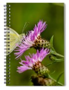 Beautiful Butterfly On Pink Thistle Spiral Notebook