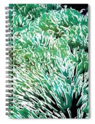 Beautiful Coral Reef 2 Spiral Notebook