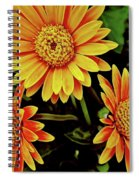 Beautiful Daisies Spiral Notebook