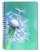 Beautiful Dandelion Spiral Notebook