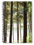 Beautiful Day Spiral Notebook