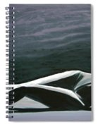 Beautiful Diver Spiral Notebook