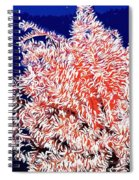 Beautiful Fan Coral Spiral Notebook