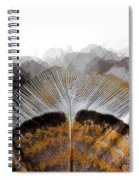 Beautiful Feather Spiral Notebook