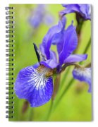 Beautiful Flower Iris Spiral Notebook